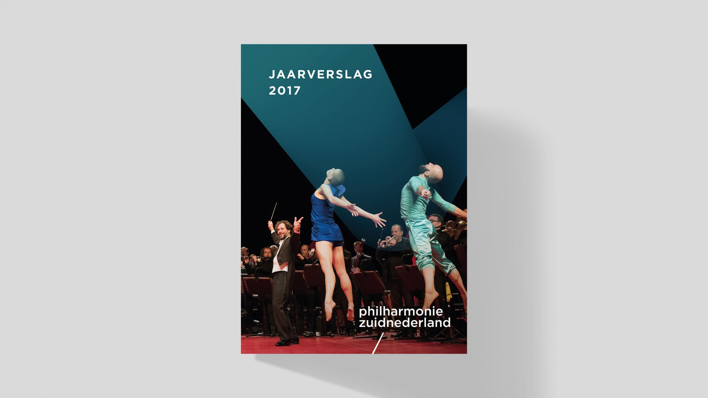 PHZ Website jaarverslag